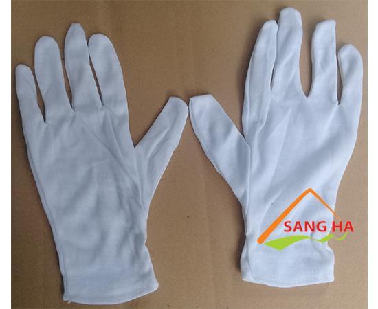 Găng tay vải thun PET
