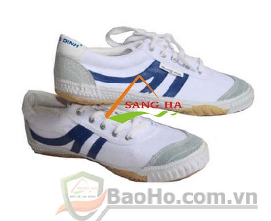 giày thể thao thượng đình